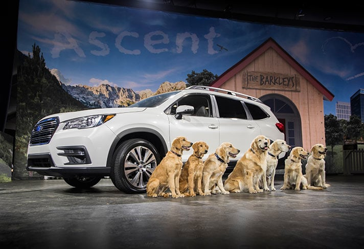 2019 Subaru Ascent Emerson NJ