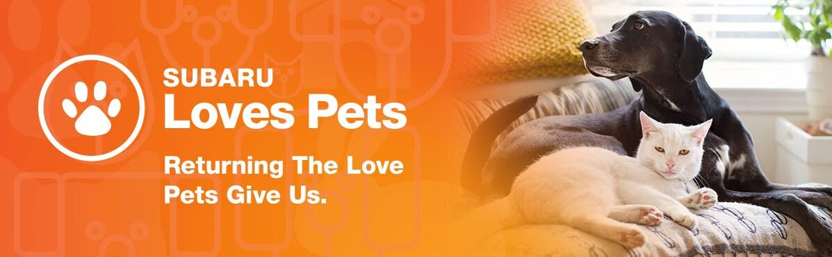 Ruff Rehab Pet Supply Drive