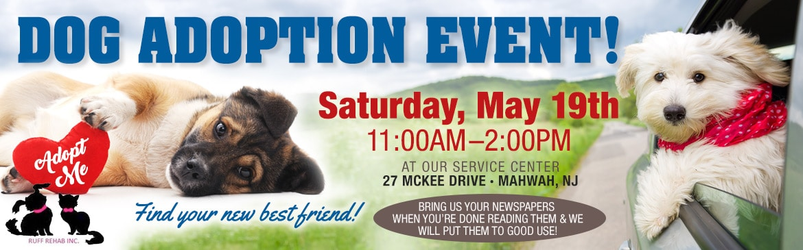 Dog Adoption Event Mahwah NJ
