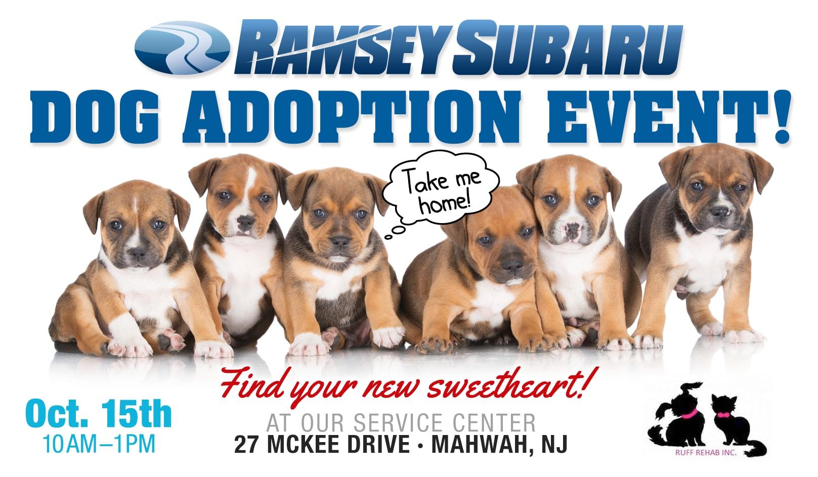 Ruff Rehab Dog Adoption Event