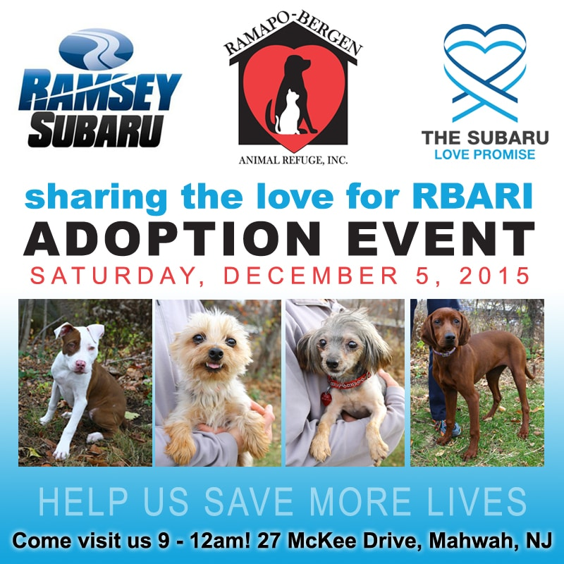 Ramsey Subaru RBARI Dog Adoption Event