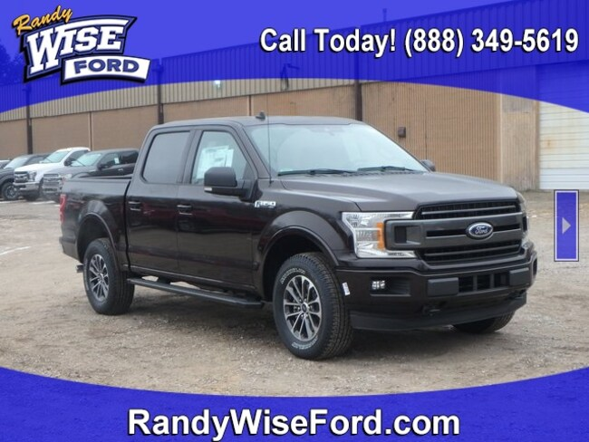 DYNAMIC_PREF_LABEL_AUTO_NEW_DETAILS_INVENTORY_DETAIL1_ALTATTRIBUTEBEFORE 2019 Ford F-150 XLT Truck for sale in Ortonville MI