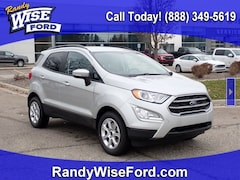 New 2020 Ford EcoSport SE Crossover MAJ3S2GE8LC318204 for sale in Ortonville near Flint, MI