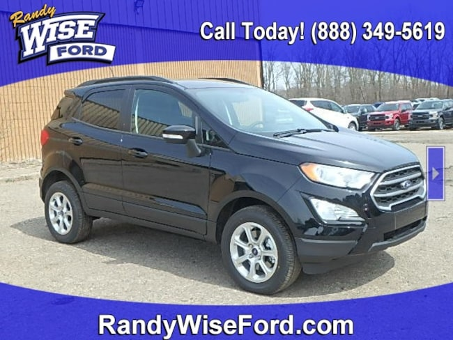 DYNAMIC_PREF_LABEL_AUTO_NEW_DETAILS_INVENTORY_DETAIL1_ALTATTRIBUTEBEFORE 2019 Ford EcoSport SE Crossover for sale in Ortonville MI