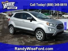 2019 Ford EcoSport SE Crossover MAJ6S3GL1KC253986 for sale in Ortonville near Flint, MI