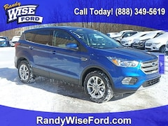 2019 Ford Escape SE SUV for sale in Ortonville near Flint, MI