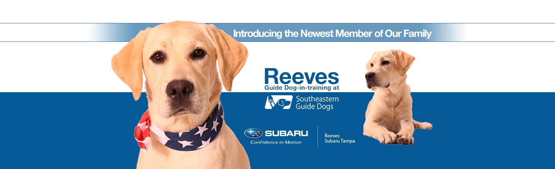Reeves Guide Dog