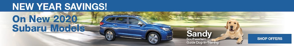 New Subaru Specials - January
