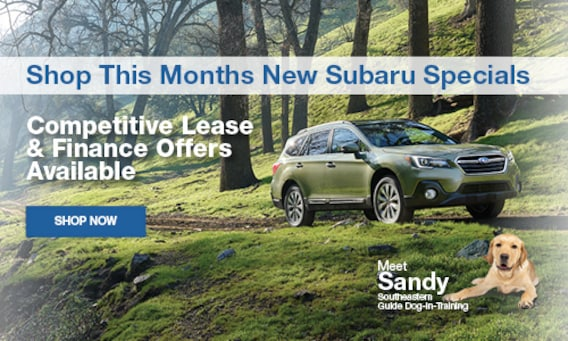 New Subaru Cars, SUVs, CUVs & Hatchbacks For Sale in Tampa
