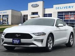 2019 Ford Mustang Ecoboost Fastback EcoBoost  Fastback