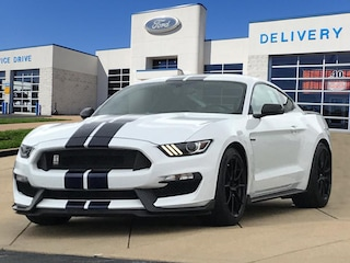 2019 Ford Mustang Shelby GT350 Fastback Shelby GT350  Fastback