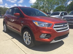 New 2019 Ford Escape SE SUV in Archbold, OH