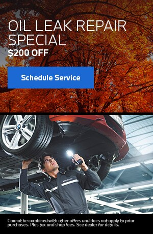 Oil Leak Repair Special