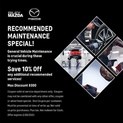 Recommended Maintenance
