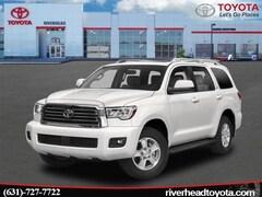 2019 Toyota Sequoia SR5 SUV 5TDBY5G11KS172423