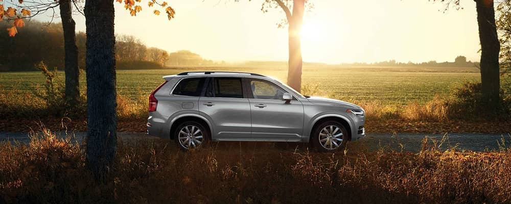 2019 Volvo XC90 In Autumn