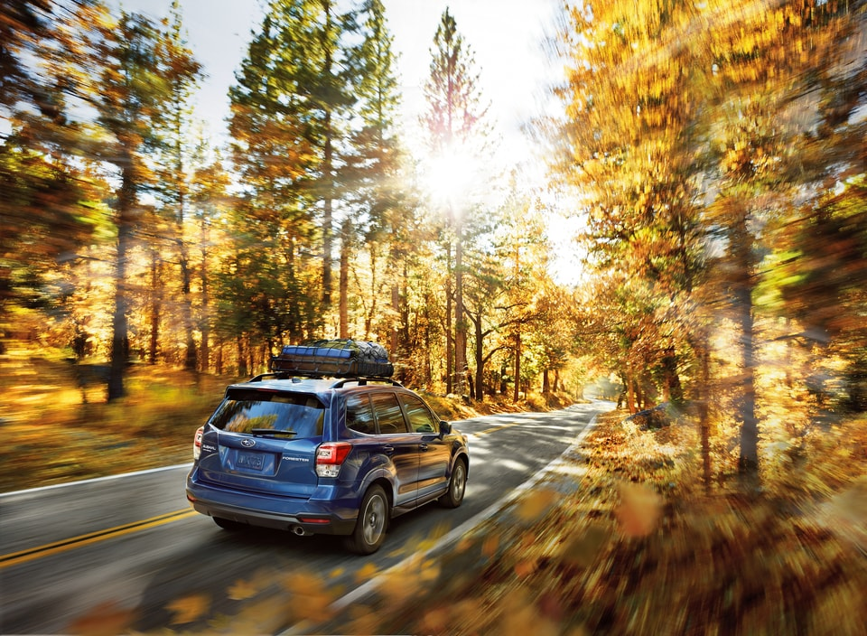 Experience the Fun-To-Drive 2018 Subaru Forester from Rogers