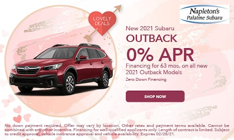 February 2021 Outback Special