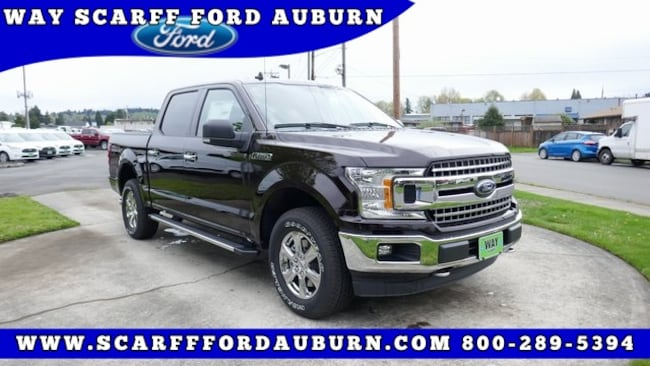 New 2019 Ford F-150 XLT Truck for Sale in Auburn WA
