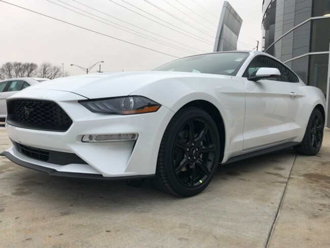 New 2019 Ford Mustang Ecoboost Premium Coupe for sale in Seminole, OK