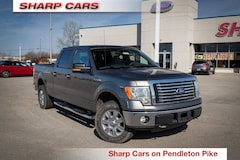 2010 Ford F-150 XLT Truck for sale in Indianapolis, IN