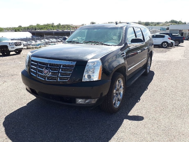 Shaw Gmc Calgary >> 2009 Cadillac Escalade Esv Base Leather Sunroof Suv