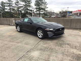 New 2019 Ford Mustang Ecoboost Coupe in Ashland, VA
