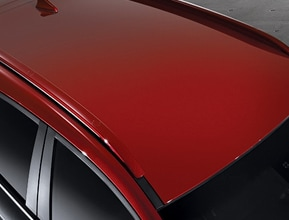 Red armor two-tone roof and side mirrors