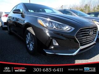 New 2019 Hyundai Sonata SE Sedan V742218 for sale near you in Waldorf, MD