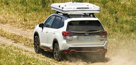 There's even more to love about the 2019 Forester