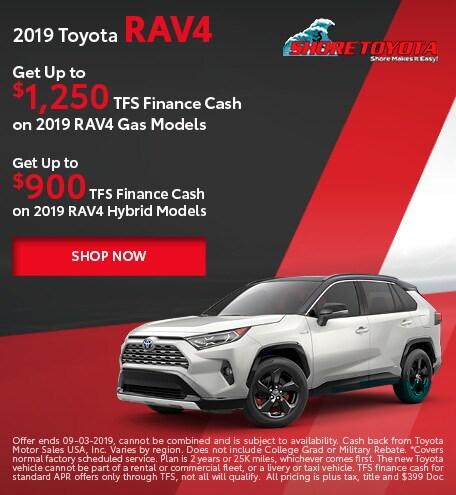 2019 Toyota RAV4 & RAV4 Hybrid