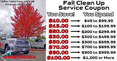 Fall Clean Up Service Coupon