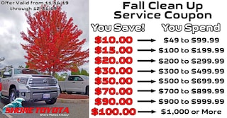 Fall Service Coupon