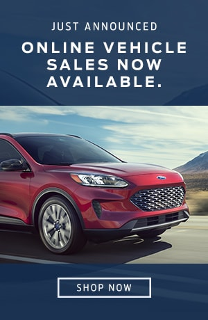 Online Vehicle Sales Available (no date)