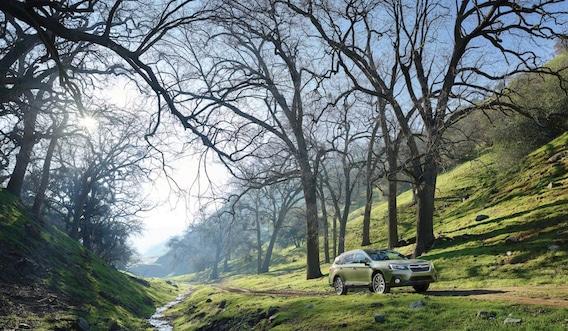 Subaru Outback Dealer | Yonkers, New York
