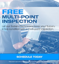 Free Multi-Point Inspection