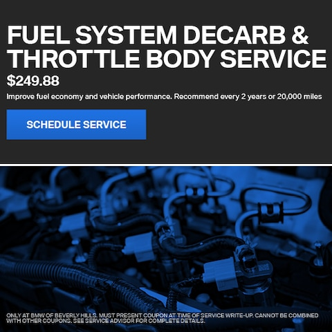 Fuel System Decarb & Throttle Body Service