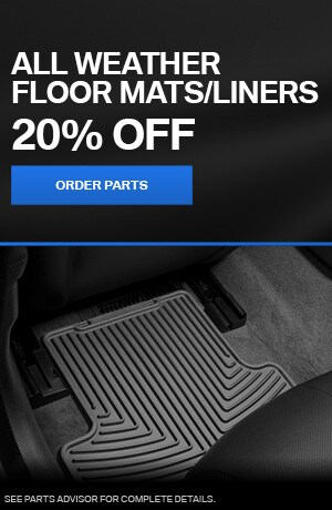 ALL WEATHER FLOOR MATS/LINERS
