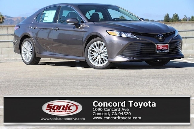 New 2019 Toyota Camry XLE V6 Sedan in Concord, CA
