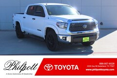 New 2019 Toyota Tundra SR5 4.6L V8 Special Edition Truck CrewMax in Nederland