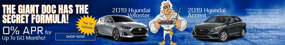 2019 veloster-accent