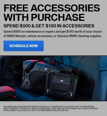 FREE ACCESSORIES WITH PURCHASE