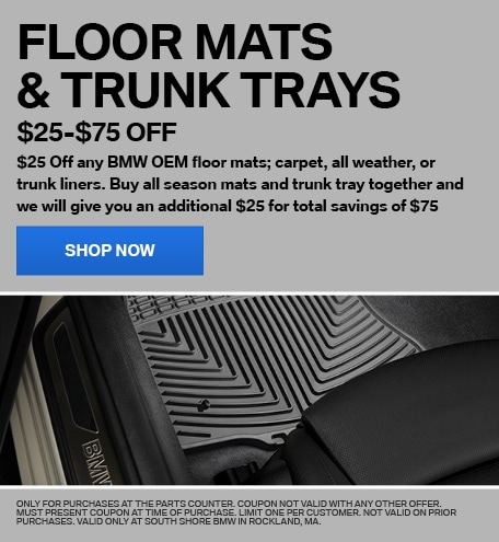 FLOOR MATS & TRUNK TRAYS