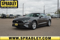 Buy a new 2019 Ford Mustang Ecoboost Coupe for sale in Pueblo CO