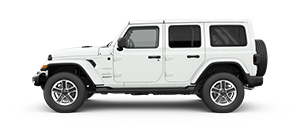 2018 Jeep Wrangler JL Sahara in Thomasville, GA, Monticello FL, and Madison County GA