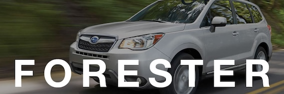 Compare Subaru Outback vs Forester in Ellsworth Maine at