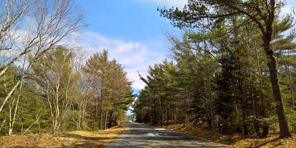 a different part of Acadia National Park on the Park Loop Road