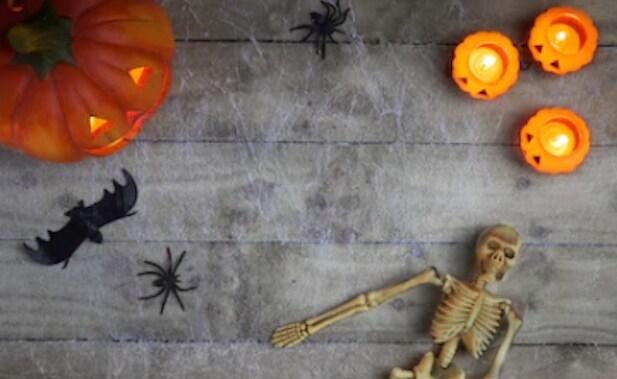 pumpkins-skeleton-and-bats-on-table.png