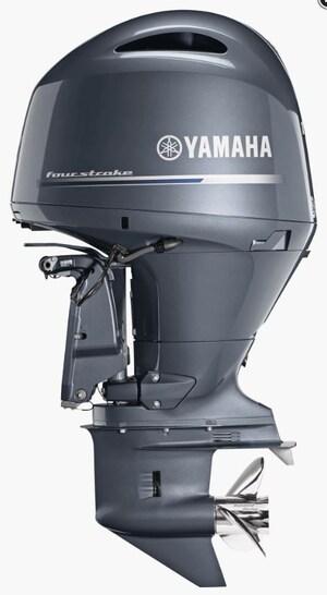 2019 YAMAHA F150LB - 20