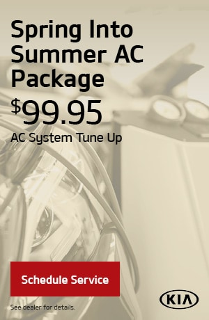 Spring into Summer AC Package